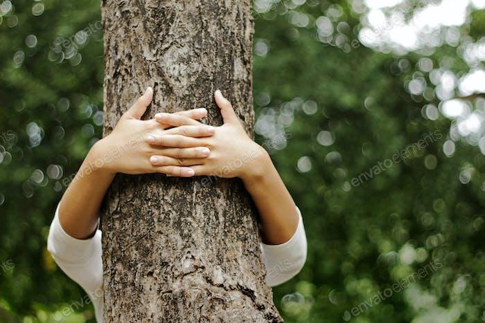 Hände umarmen einen Stamm eines Baumes