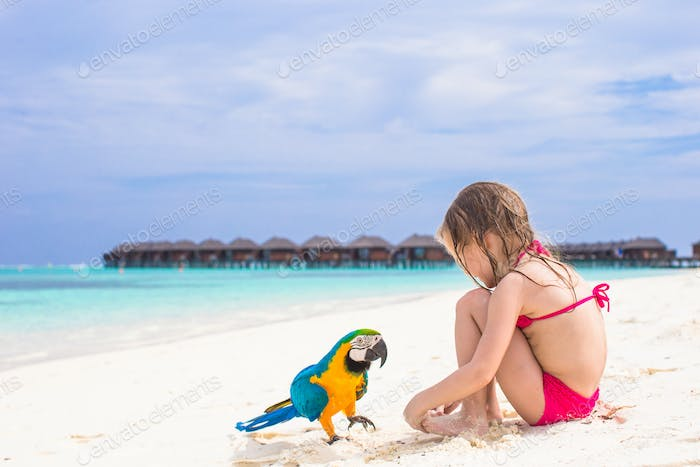 Cute big colorful parrot with adorable little girl on white beach