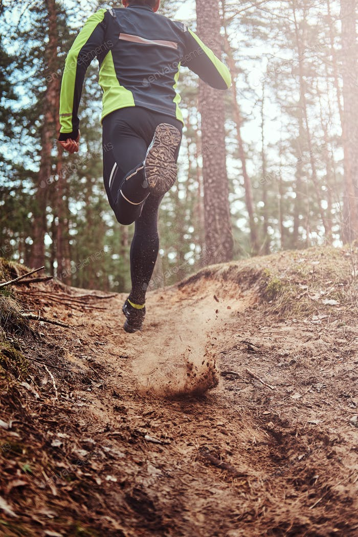 Athlete running along the forest trail. An active way of life, rear view.