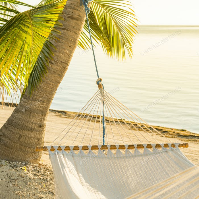 Peaceful Vacation Hammock