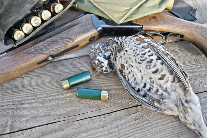 Grouse and gun on board