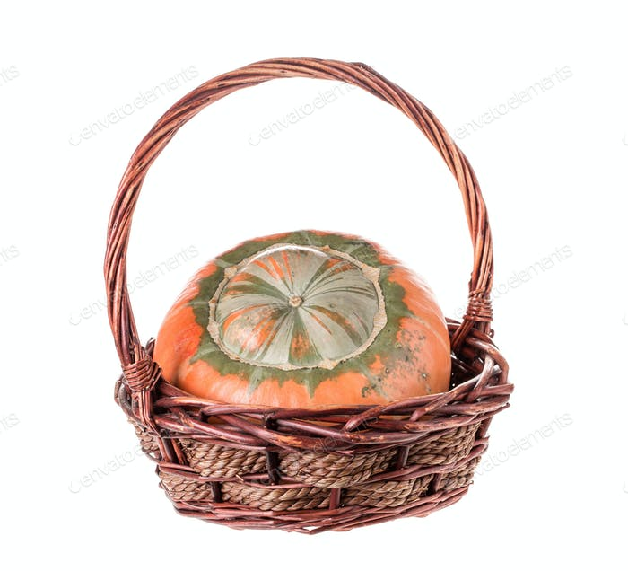 Composition of a pumpkin at the basket.