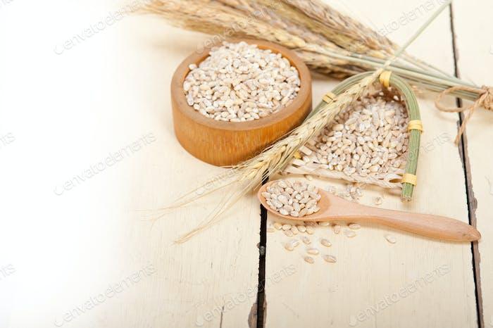 organic barley grains
