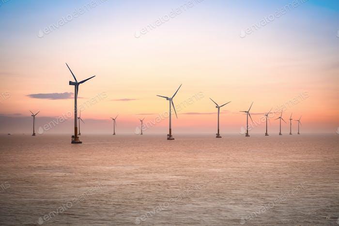 Thumbnail for Offshore-Windpark bei Sonnenuntergang