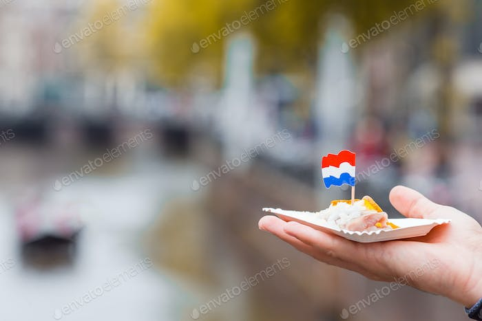 Tasty fresh herring with onion and netherland flag on the water channel background in Amsterdam