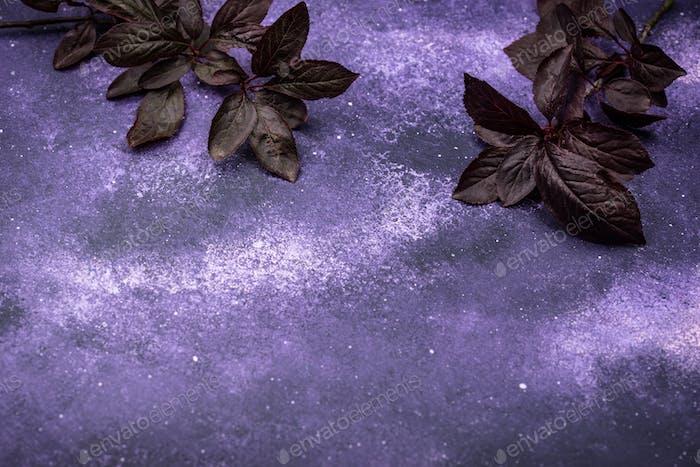 Purple violet cosmic background with dark leaves