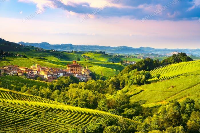 Langhe vineyards panorama, Barolo village, Piedmont, Italy Europ
