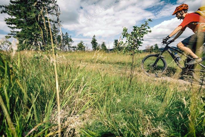 Mountain biking man riding in woods and mountains
