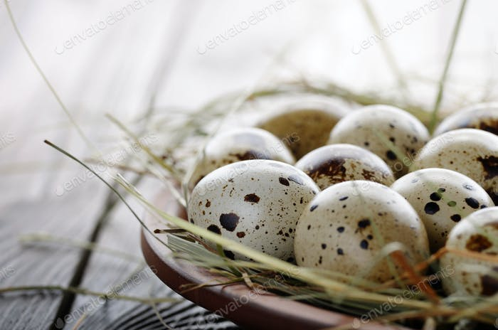 Fresh organic quail eggs in clay plate on wooden rustic kitchen