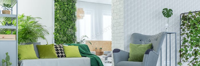 Green decoration in room