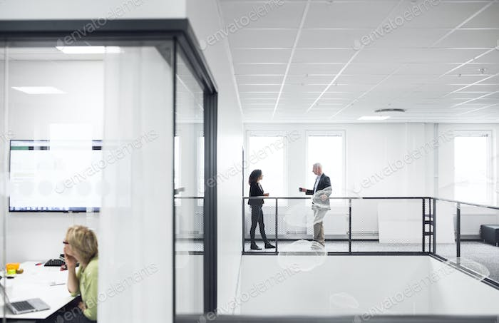 Architects talking in corridor of office