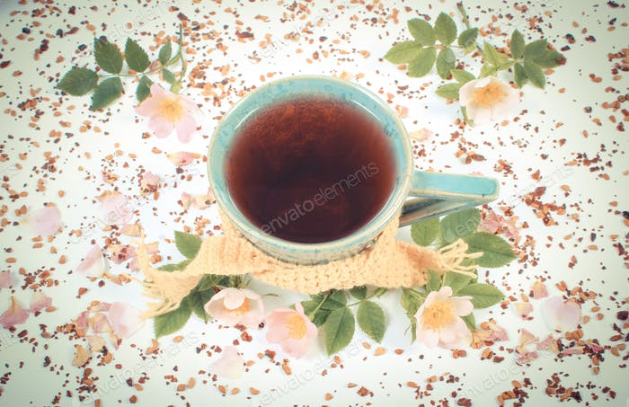 Vintage photo, Cup of tea with wild rose flower on white background