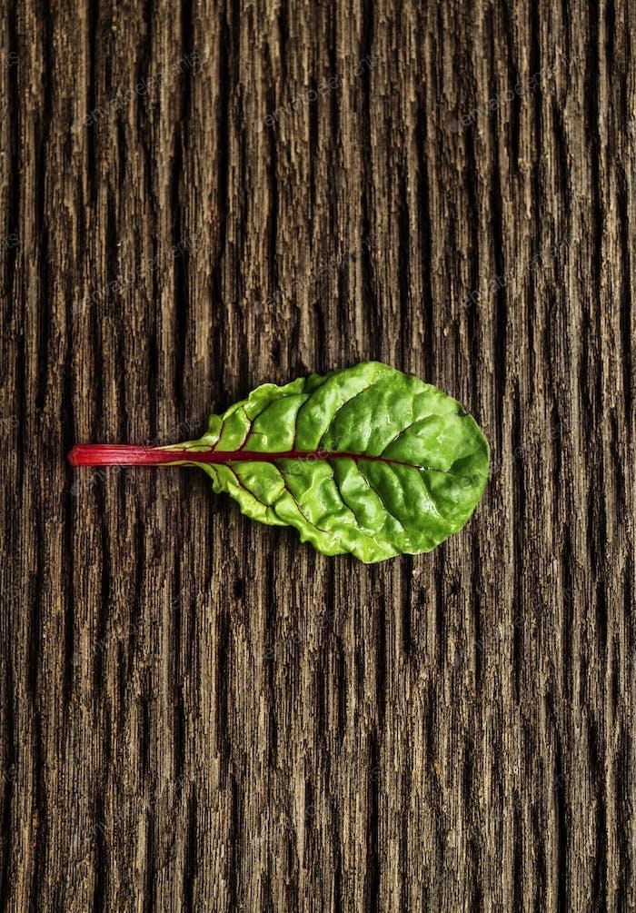 Natural organic fresh green leaf on a wood