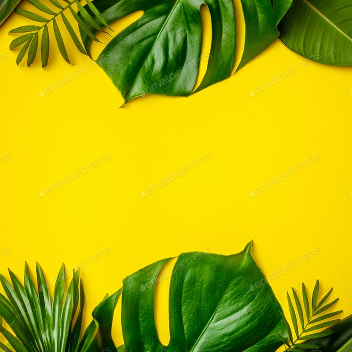 Tropical leaves and flowers on yellow background