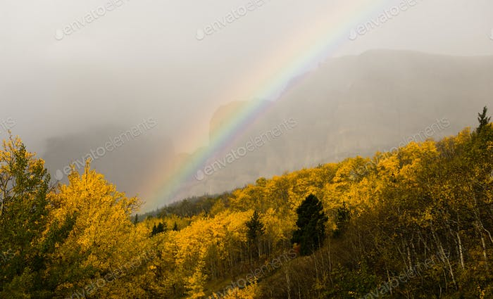 Rainbow Fall Color Rocky Mountains Glacier National Park Montana