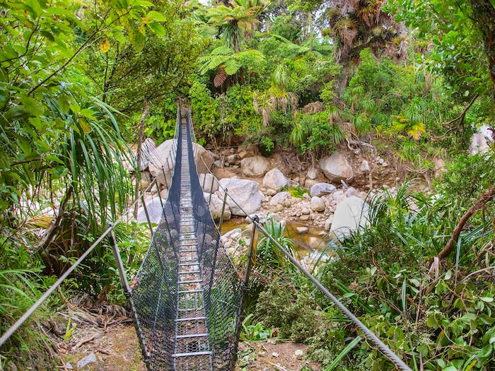 Metal Swingbridge on the Heaphy Track