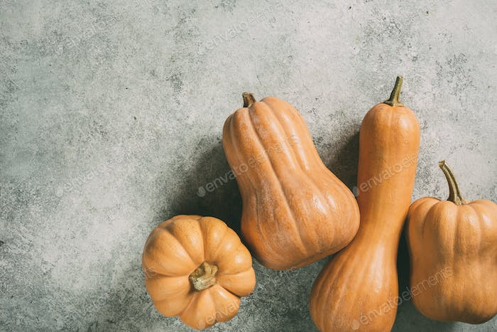 Delicious orange pumpkins for cooking