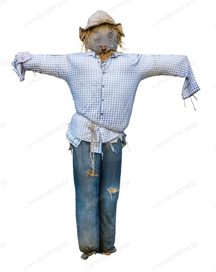 Spooky Isolated Scarecrow