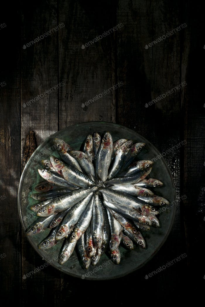 Raw anchovies in dish