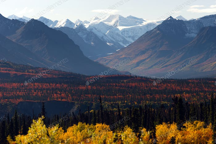 Denali Range Autumn Color Alaska Wilderness Winter Season