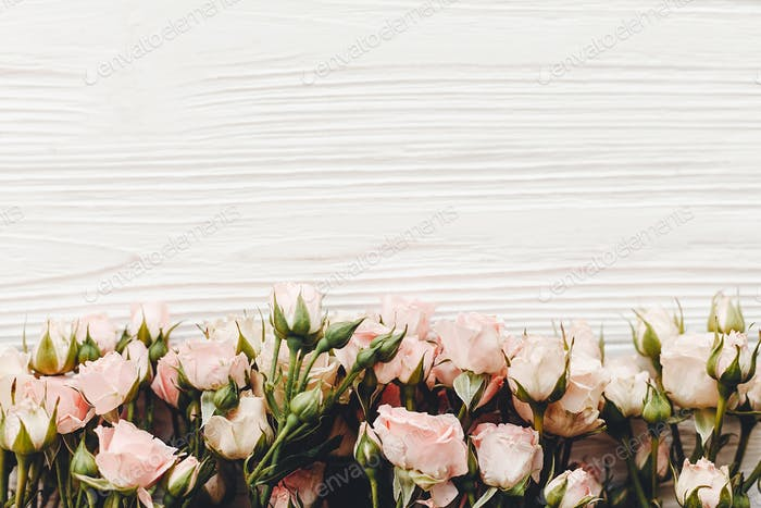 Pink small roses on wooden background