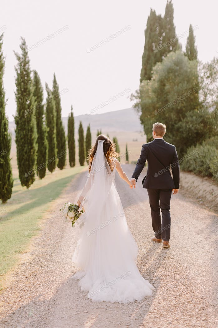 Wedding couple walk in Tuscany with cypress trees background