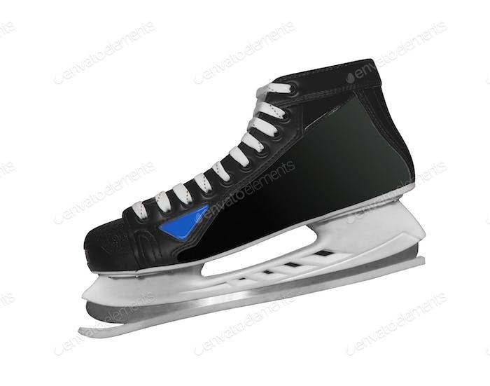 skates isolated
