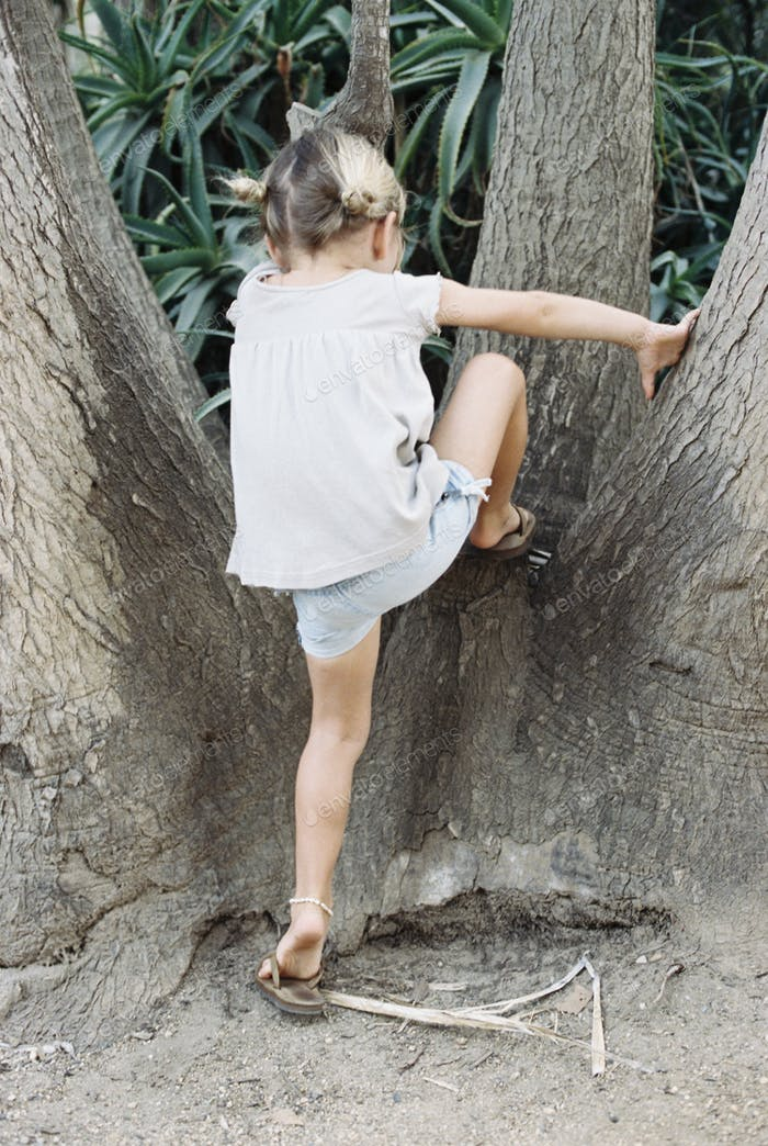 A young blond haired girl climbing a tree.