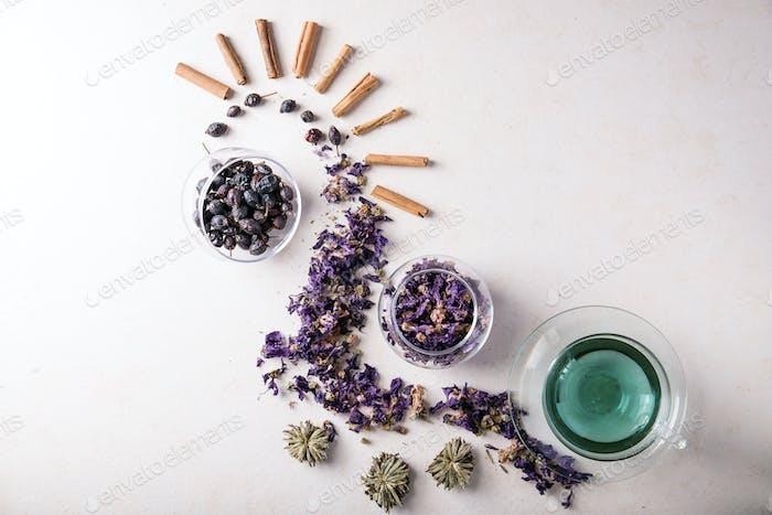 Schmetterling Erbsenblume Tee