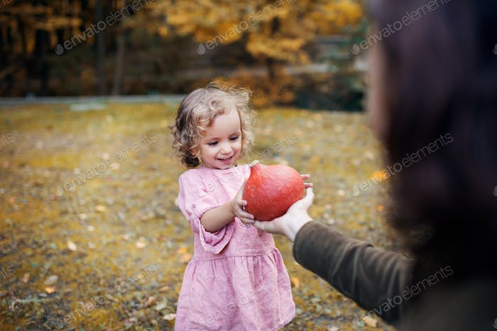 Small toddler girl with mother on a walk in autumn forest, holding hokkaido pumpkin