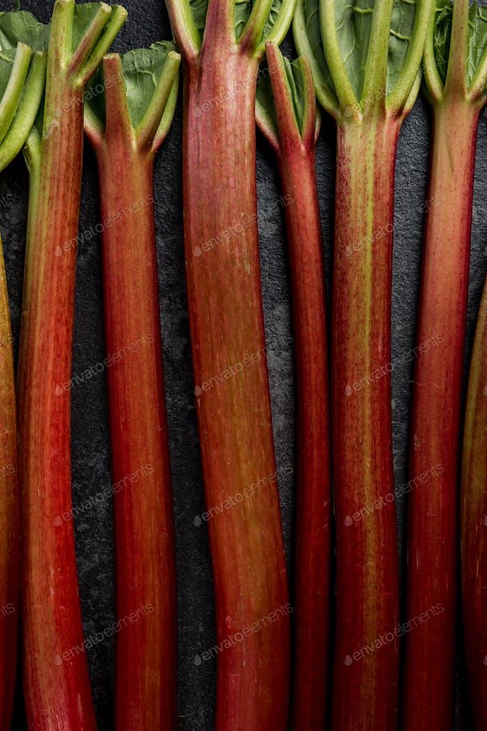 Rhubarb steams on dark background, close up view