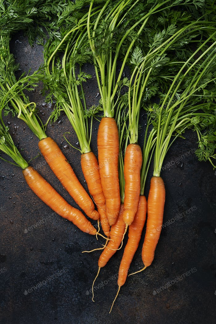 Frische Karotten mit grünen Blättern