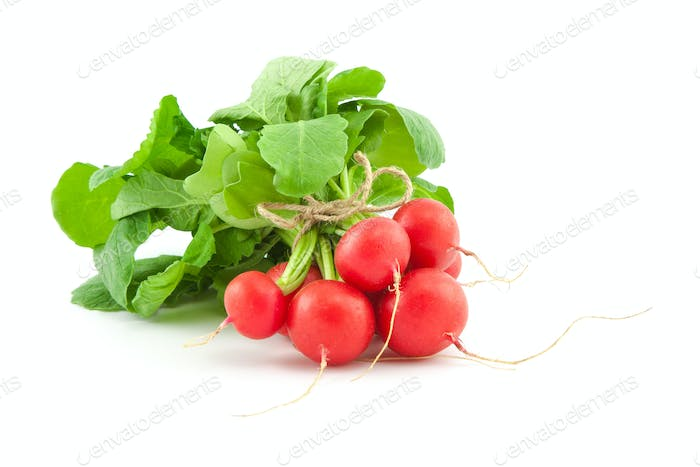 A bunch of fresh radishes on white