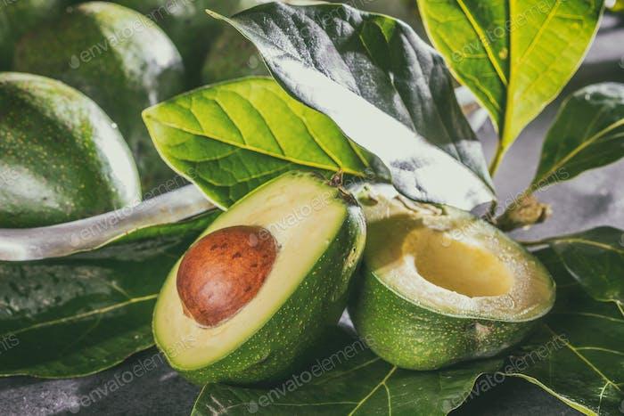 Aguacate fresco con hojas de árbol de aguacate. Cerrar hacia arriba