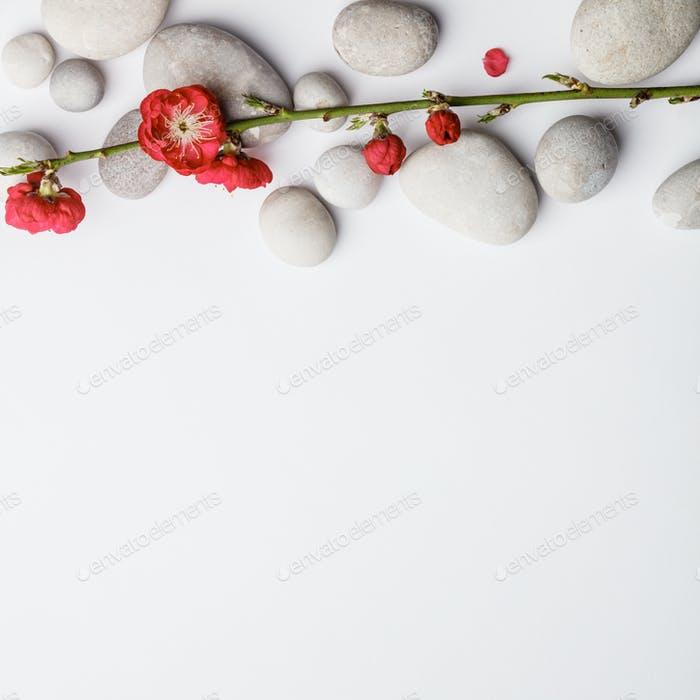Aromatherapy, beauty, Spa background with copy space