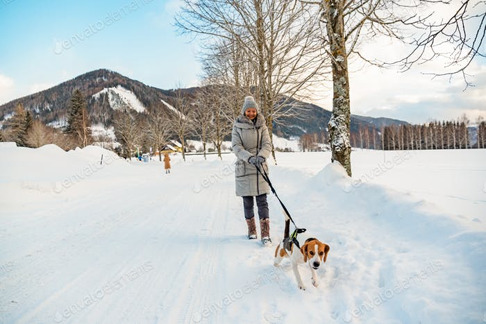 Woman with dog on a walk in winter scenery