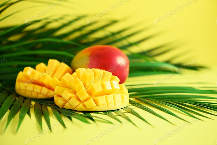 Exotic mango fruit over tropical green palm leaves on yellow background. Copy space. Pop art design