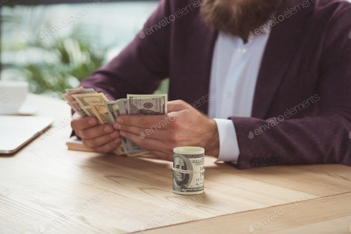 cropped view of businessman counting money, salary concept