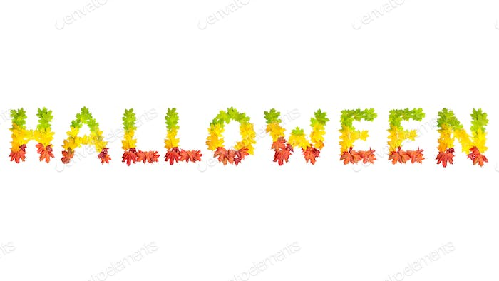 fall leaves forming word halloween isolated on white background