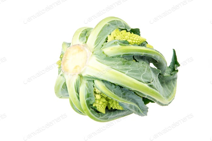Isolated Romanesco Broccoli
