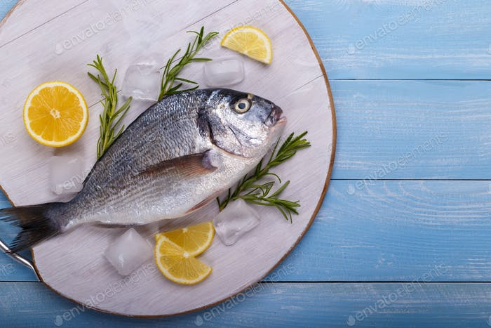 Fresh raw sea bream