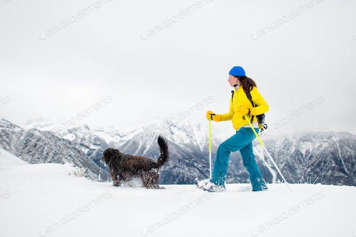 black dog with a girl on a walk with snowshoes in the mountains