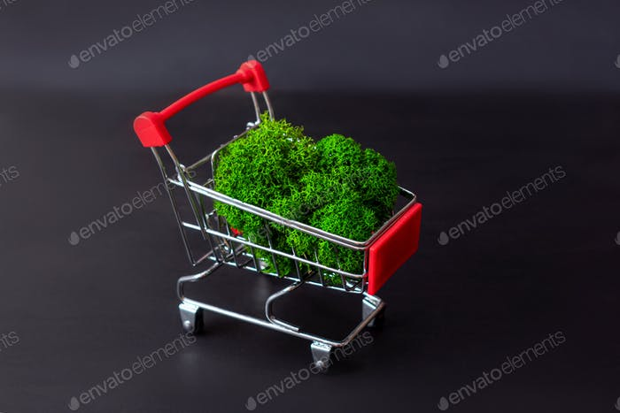 Natural green moss in food basket.