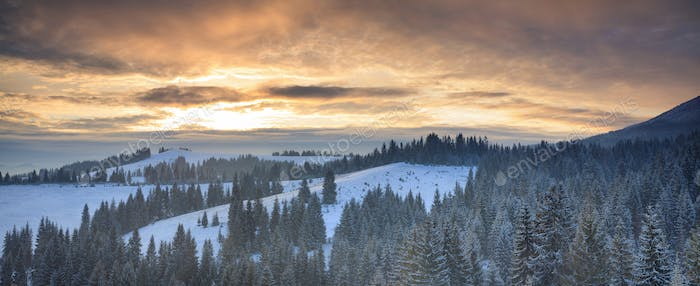 View of the mountains and snowy forest