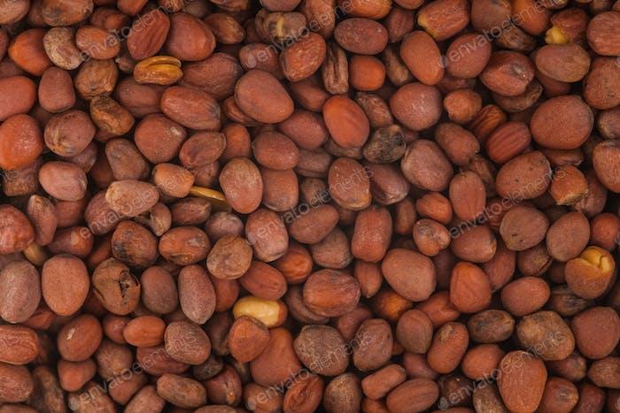 Extreme Closeup of Radish Seeds