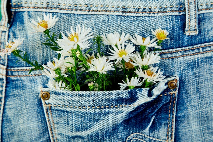 Bouquet of white flower in the pocket of a jeans