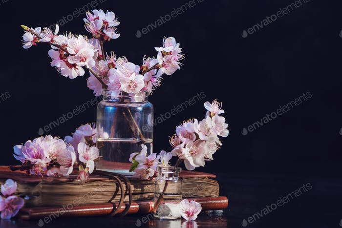 Cherry blossom, sakura flowers in glass jars on a vintage book. Fragile spring bloom still life on a