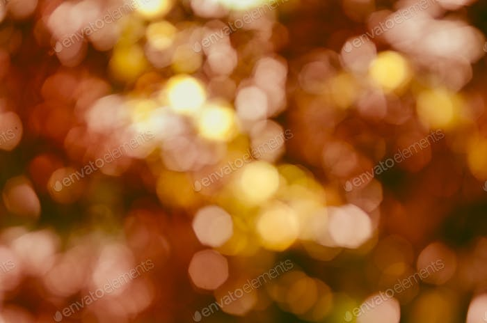 Orange bokeh with christmas lights