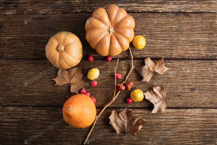 Autumn flat lay with pumpkins