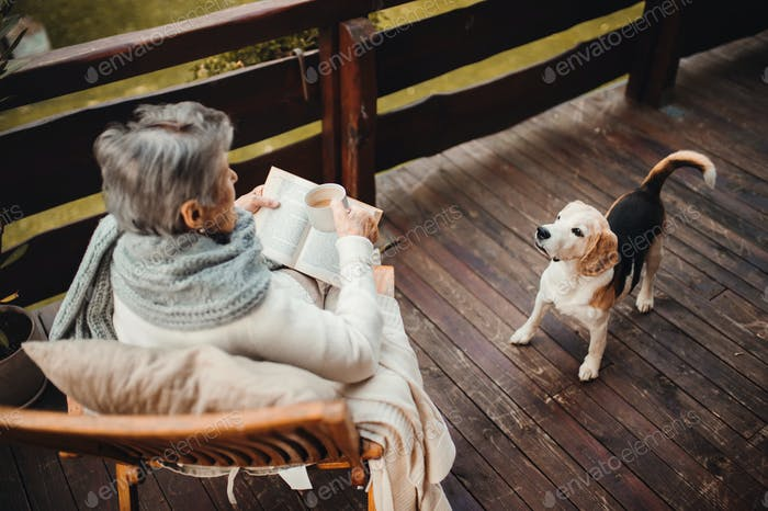Elderly woman with a dog sitting outdoors on a terrace on a sunny day in autumn.